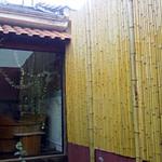 painel de bambu cana da índia