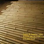 bambu cana da índia tratada