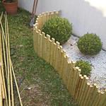 Decorar jardim de inverno com bambu