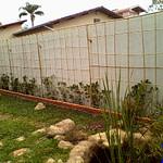 Cobertura de bambu para trepadeira