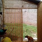 divisória de bambu como parede