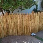 cercar com bambu o jardim