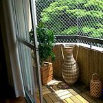 Cerca de bambu para jardim em São Paulo