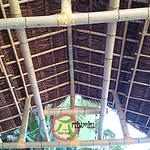 decoração com bambu cana da índia