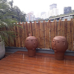 quer comprar cerca de bambu