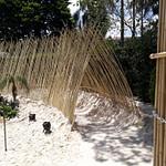 túnel de bambu