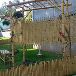 Cerca de bambu tratado