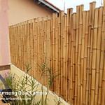 Cerca de bambu in natura