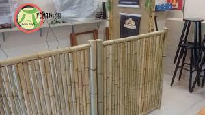 Cerca de bambu negris no jardim de inverno