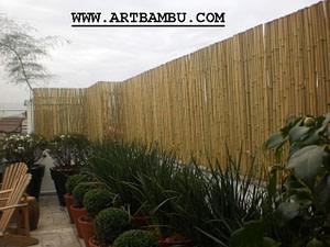 cerca de bambu para jardim de inverno