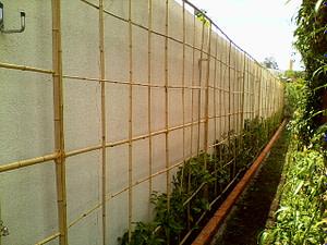 jardim vertical feito em treliças de bambu