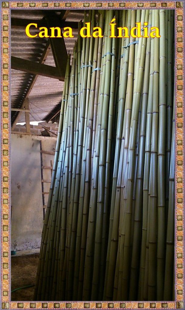 Venda de bambu cana